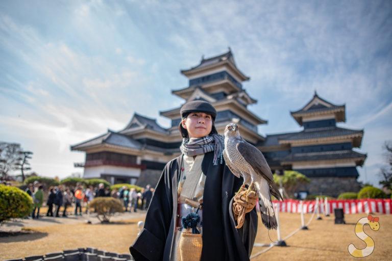松本城鷹狩