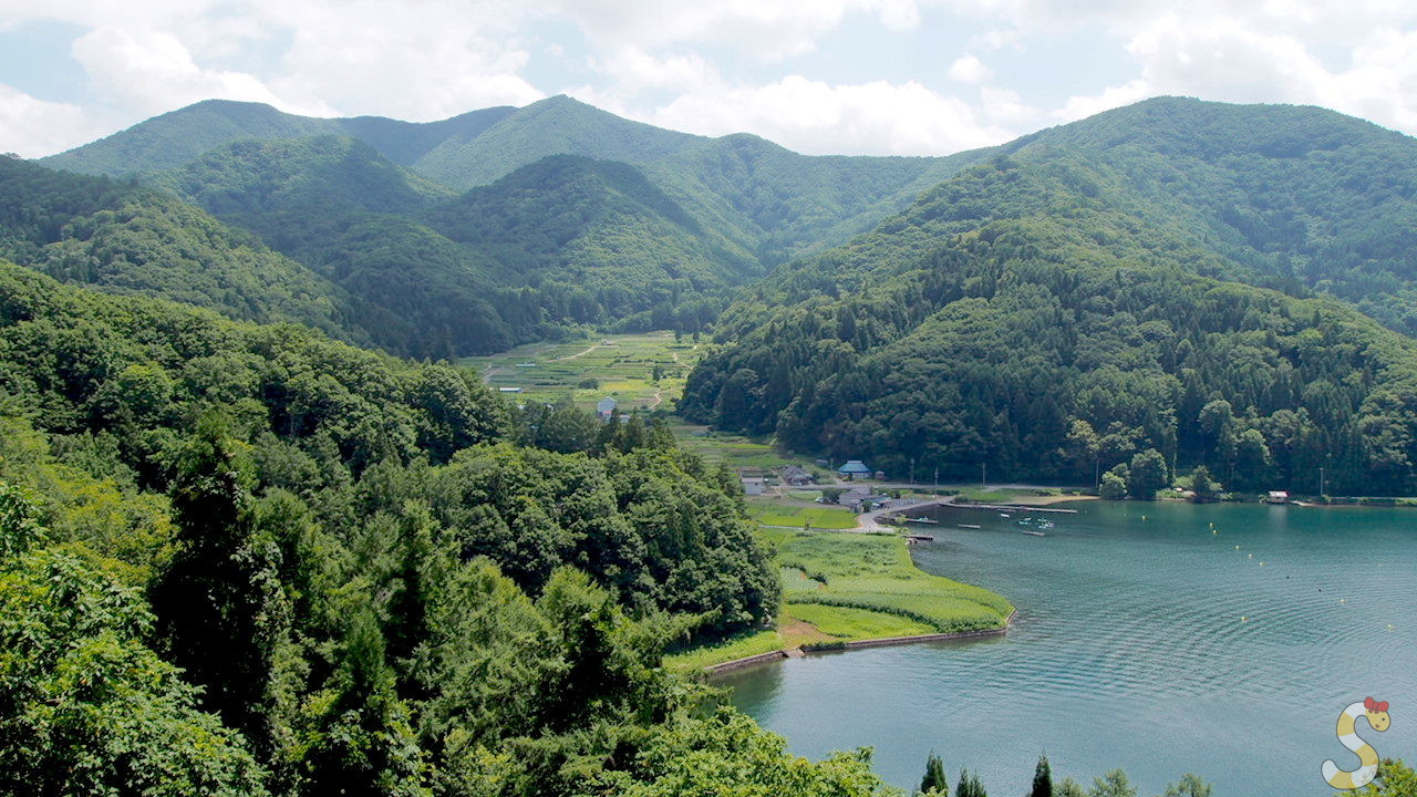 信濃町 菅川の棚田