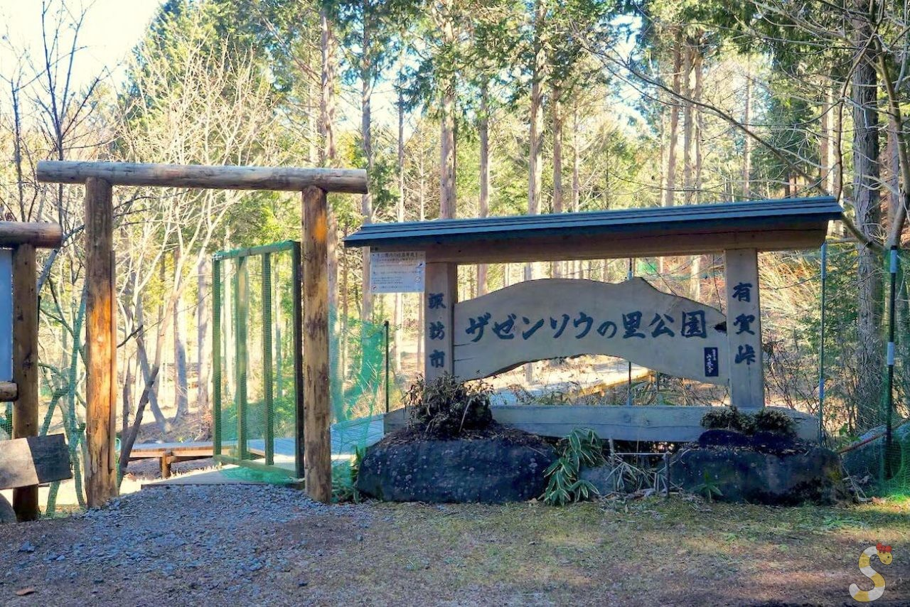 諏訪市座禅草の里公園