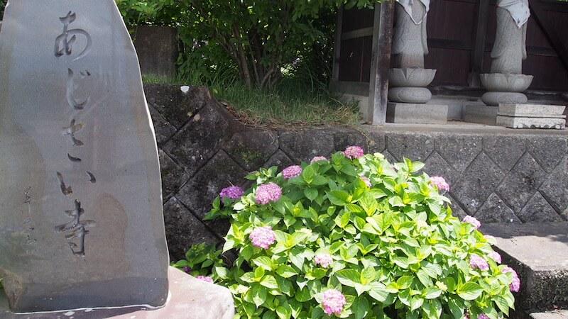 松本市法船寺のあじさい寺