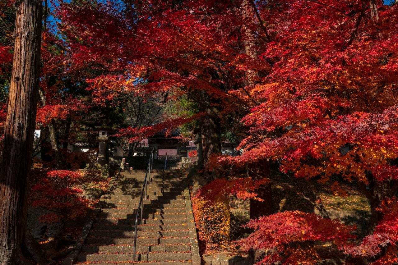千曲市龍洞院架道橋の紅葉