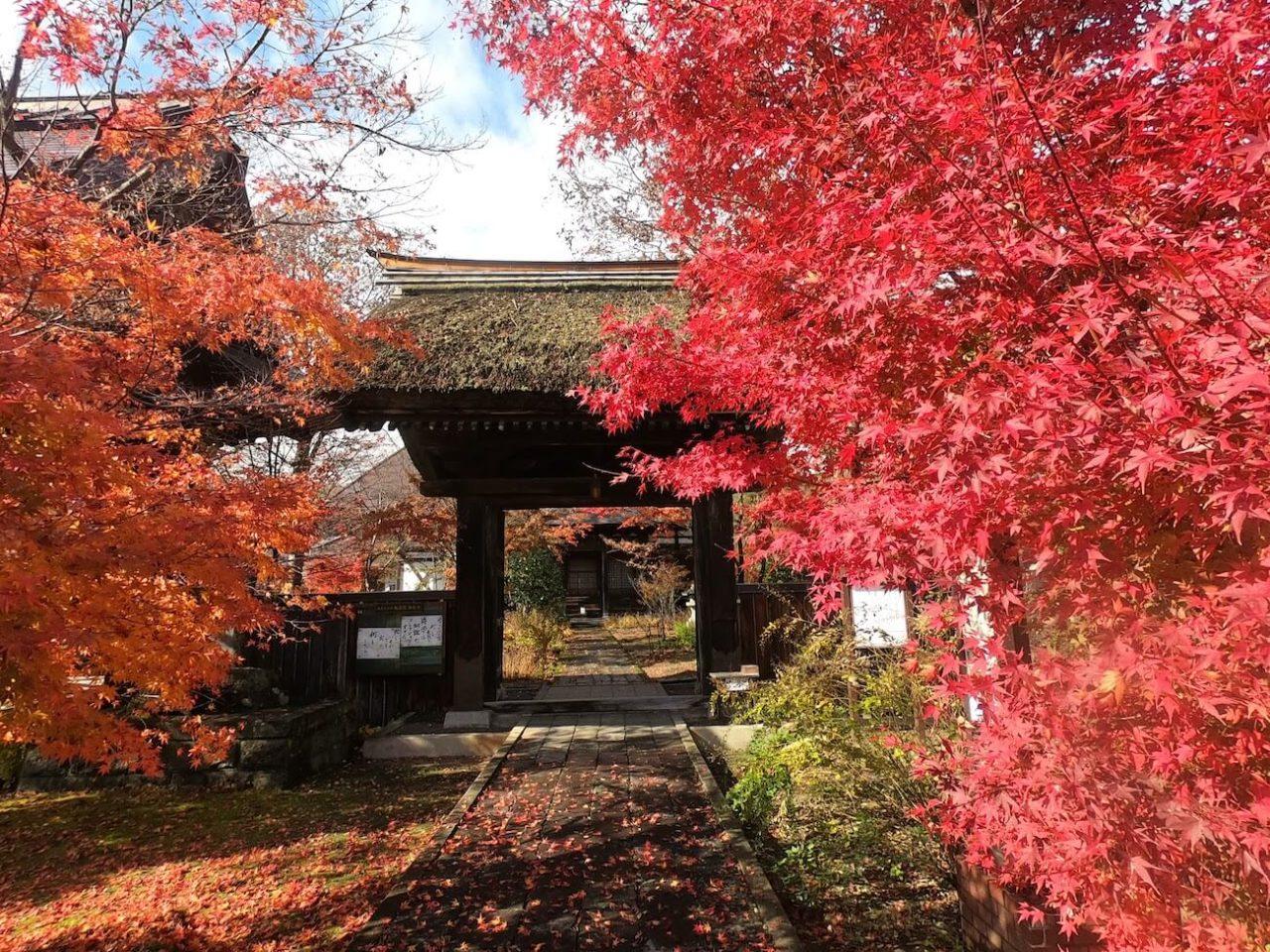 飯山市お寺